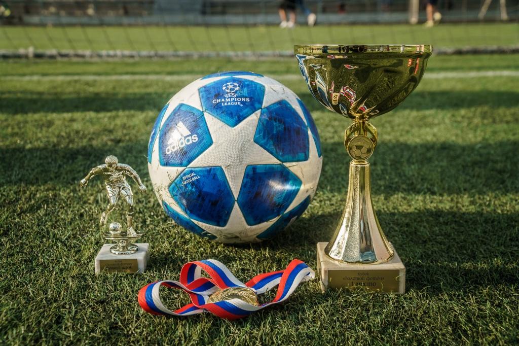 делали одежде картинки успехов в футболе голубой дивизии регулярно